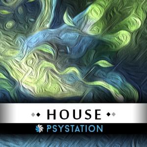 psystation-house-techno-deep-house