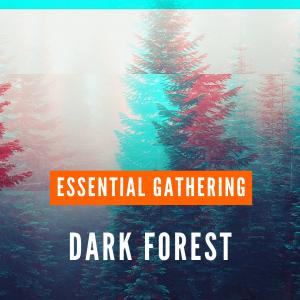 dark forest-essential gathering psystation