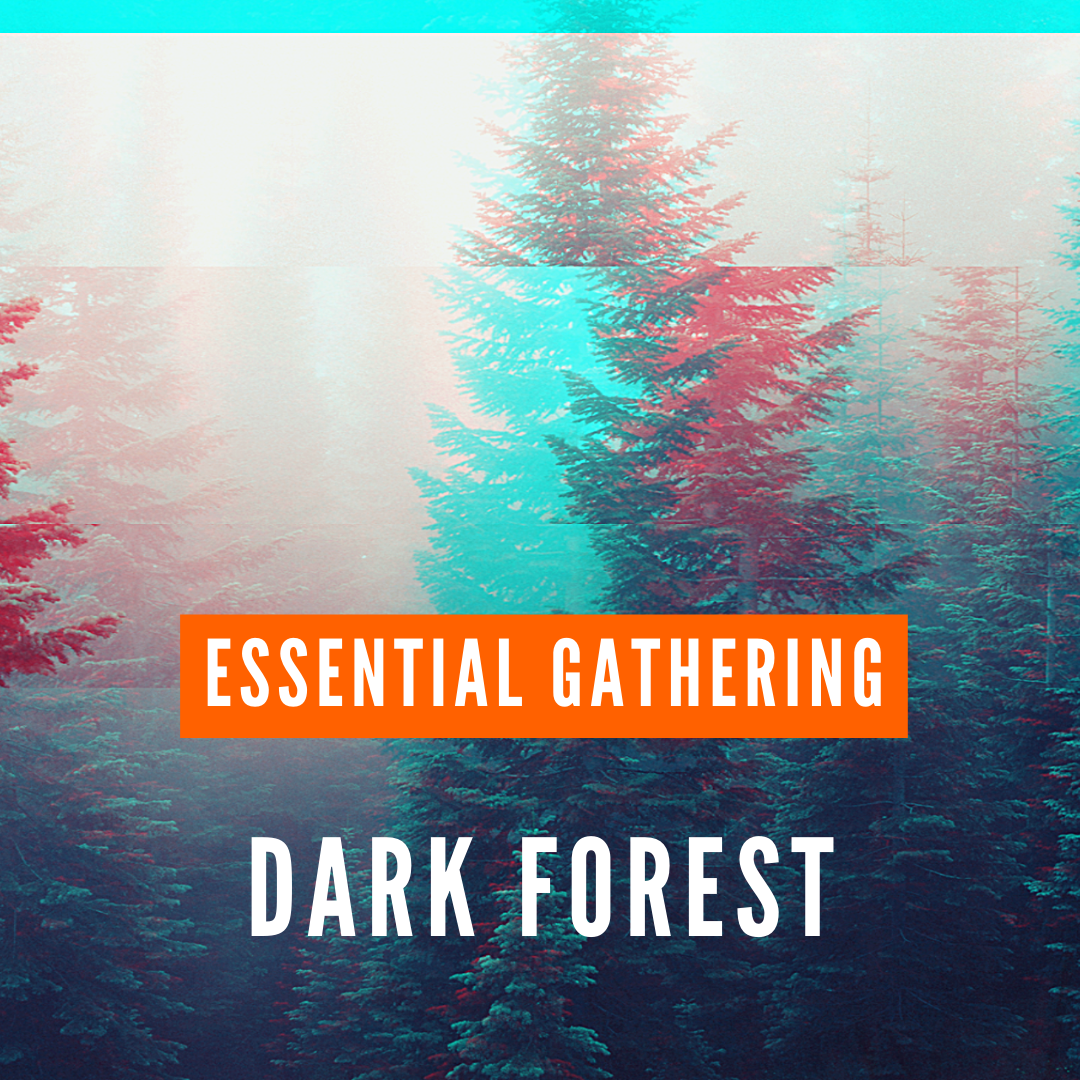 dark forest-essential gathering psystation