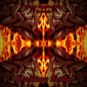 VA-Compiled-by-Znataraja-Incendiary-Brains